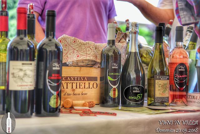 Foto Partecipazione Evento Wine Embassy – Vieni In Vila17