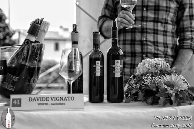 Foto Partecipazione Evento Wine Embassy – Vieni In Vila19