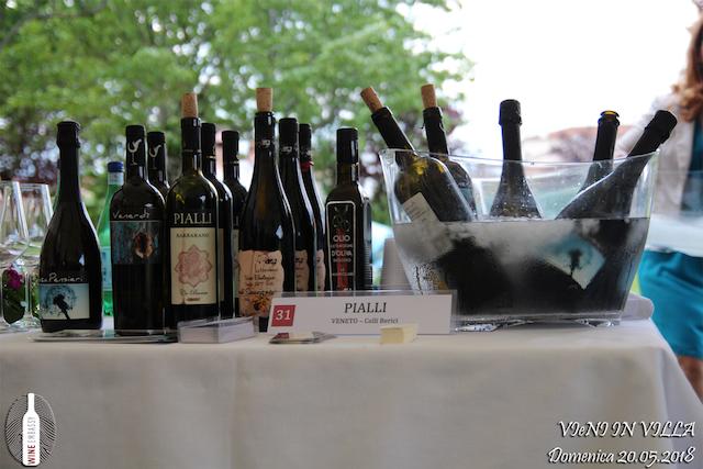Foto Partecipazione Evento Wine Embassy – Vieni In Vila22