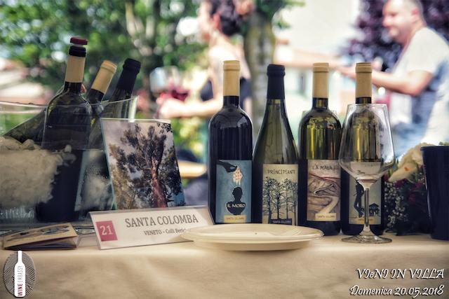Foto Partecipazione Evento Wine Embassy – Vieni In Vila23