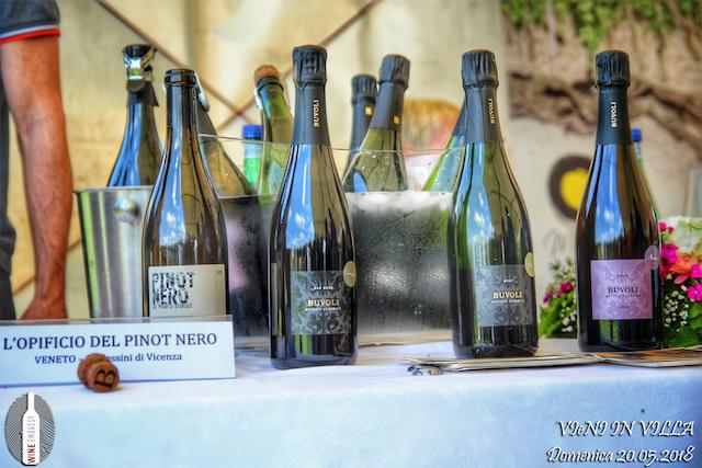 Foto Partecipazione Evento Wine Embassy – Vieni In Vila7