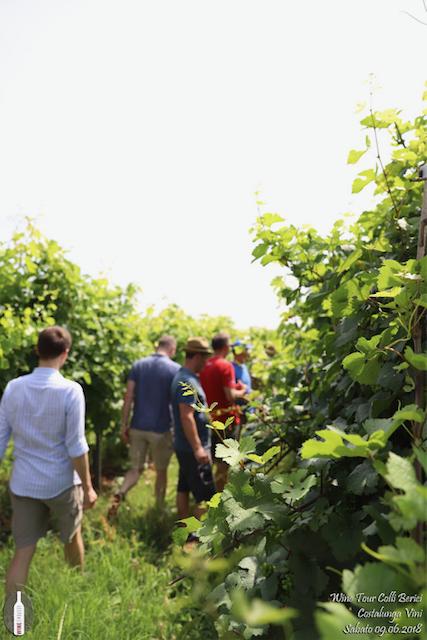 foto Evento Wine Embassy – Cantina Costalunga 5
