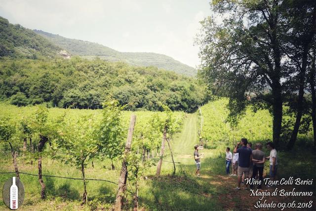 foto Evento Wine Embassy – Cantina Magia di Barbarano 8 (1)
