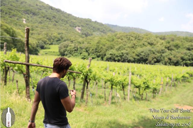 foto Evento Wine Embassy – Cantina Magia di Barbarano 9 (1)