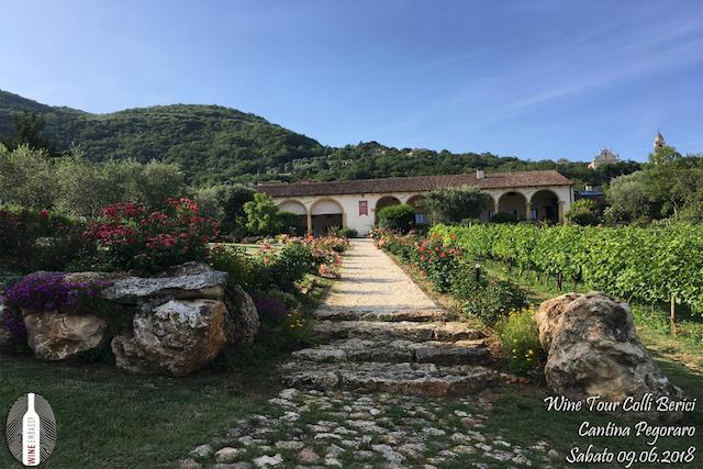 foto Evento Wine Embassy – Cantina Pegoraro 1