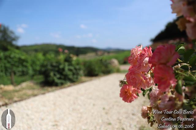 foto Evento Wine Embassy – Cantina Pegoraro 5