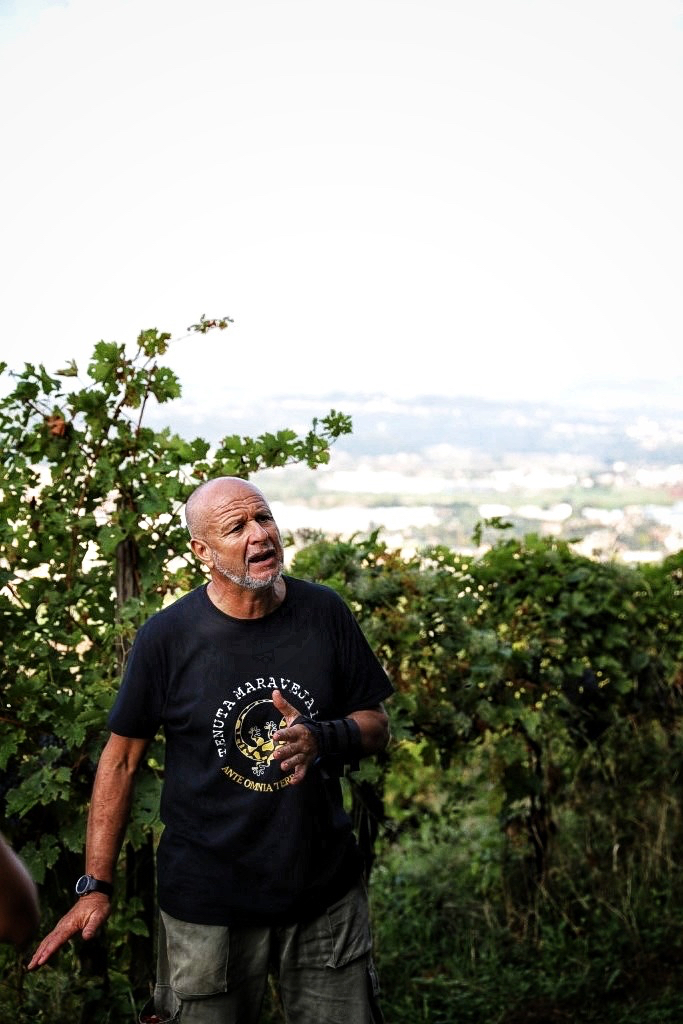 foto Evento Wine Embassy – Vendemmia Maraveja 15 sett. 15