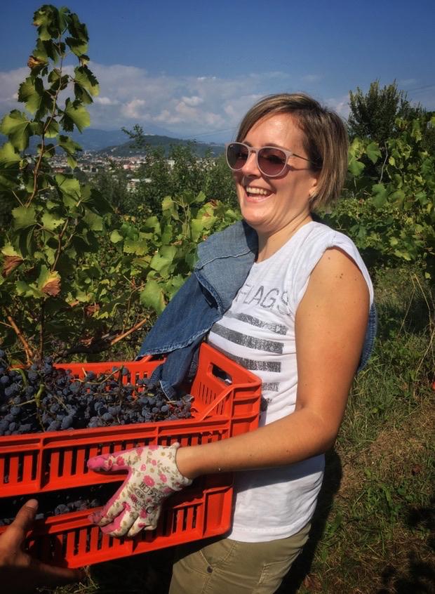 foto Evento Wine Embassy – Vendemmia Maraveja 15 sett. 2