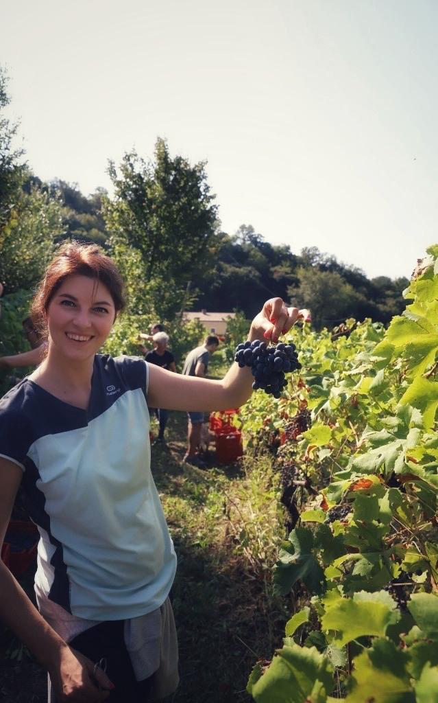 foto Evento Wine Embassy – Vendemmia Maraveja 15 sett. 32
