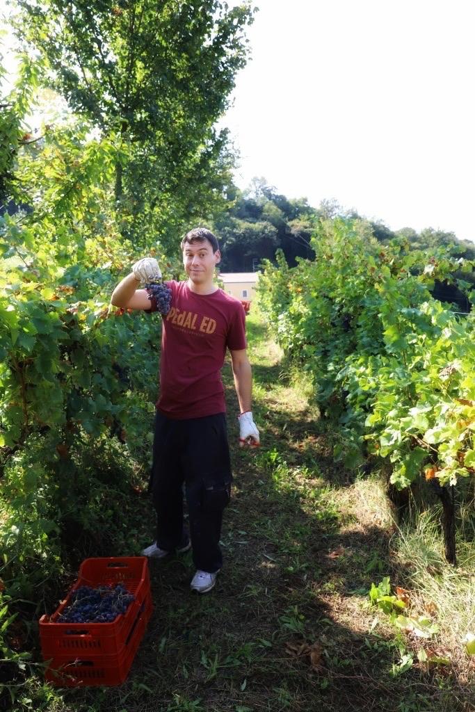 foto Evento Wine Embassy – Vendemmia Maraveja 15 sett. 34