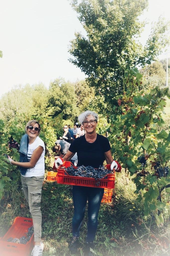 foto Evento Wine Embassy – Vendemmia Maraveja 15 sett. 37