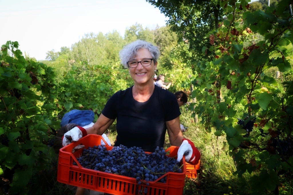 foto Evento Wine Embassy – Vendemmia Maraveja 15 sett. 38