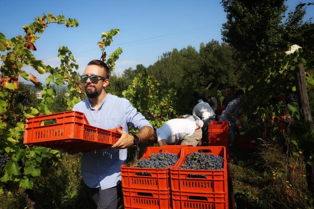 foto Evento Wine Embassy – Vendemmia Maraveja 15 sett. 44