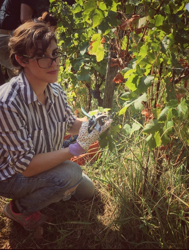 foto Evento Wine Embassy – Vendemmia Maraveja 15 sett. 5