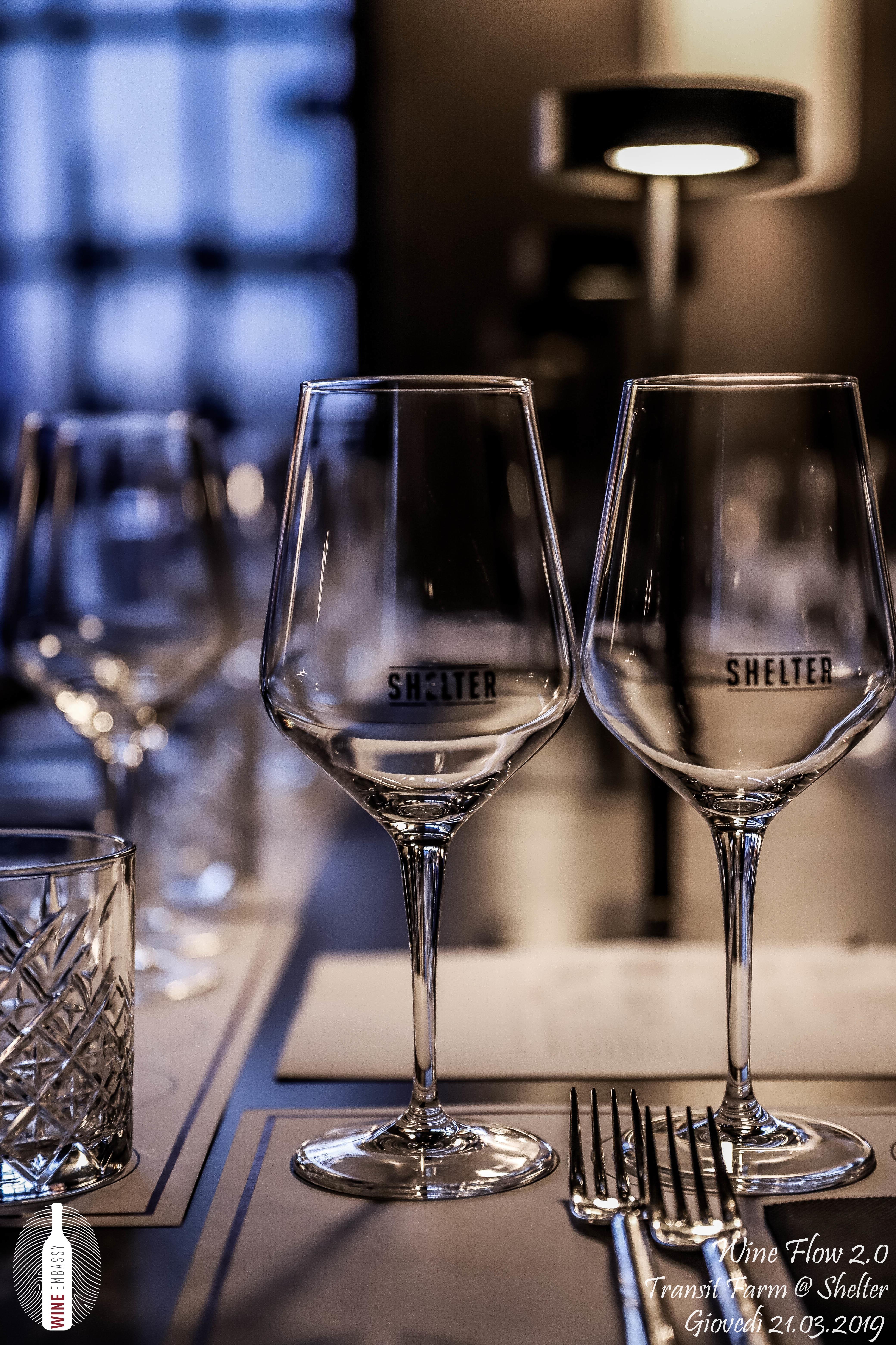 foto Evento Wine Embassy – Wine Flow Transit @ Shelter – 21 marzo 2019 – 12