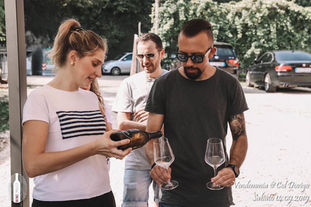 foto Evento Wine Embassy – Vendemmia @ Col Dovigo 14.09.2019 1