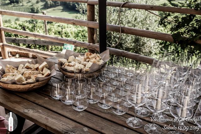 foto Evento Wine Embassy – Vendemmia @ Col Dovigo 14.09.2019 101
