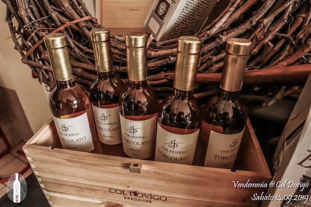 foto Evento Wine Embassy – Vendemmia @ Col Dovigo 14.09.2019 103