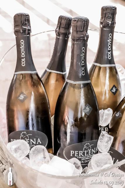 foto Evento Wine Embassy – Vendemmia @ Col Dovigo 14.09.2019 107
