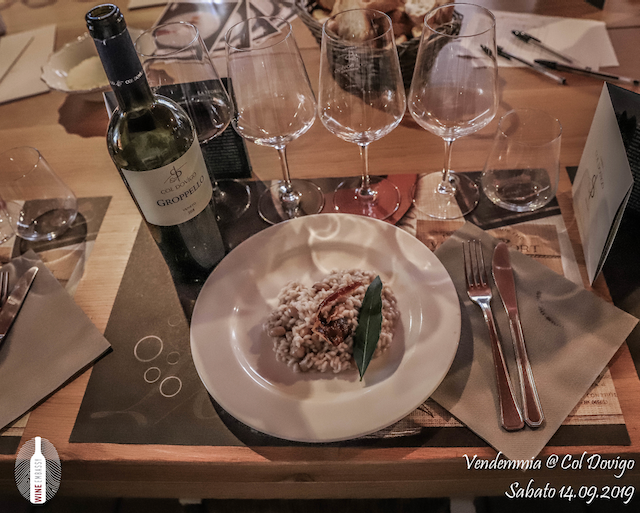 foto Evento Wine Embassy – Vendemmia @ Col Dovigo 14.09.2019 12