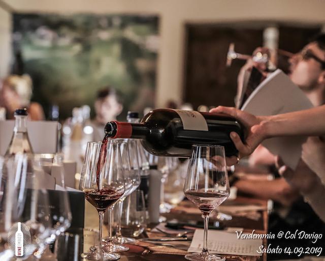 foto Evento Wine Embassy – Vendemmia @ Col Dovigo 14.09.2019 20