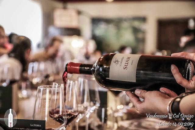 foto Evento Wine Embassy – Vendemmia @ Col Dovigo 14.09.2019 21