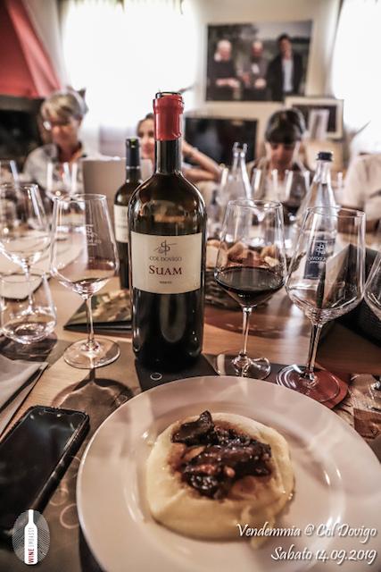 foto Evento Wine Embassy – Vendemmia @ Col Dovigo 14.09.2019 22