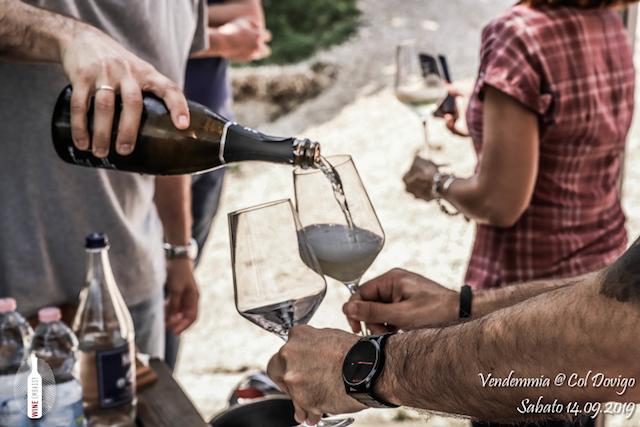 foto Evento Wine Embassy – Vendemmia @ Col Dovigo 14.09.2019 3