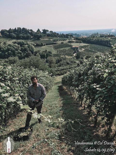 foto Evento Wine Embassy – Vendemmia @ Col Dovigo 14.09.2019 38