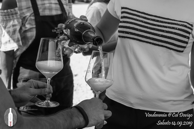 foto Evento Wine Embassy – Vendemmia @ Col Dovigo 14.09.2019 4