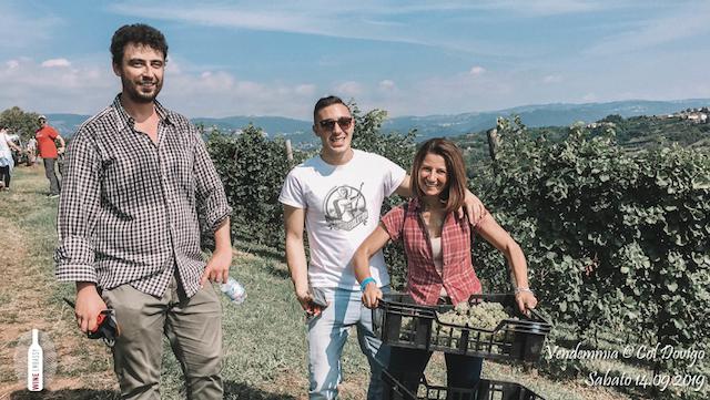 foto Evento Wine Embassy – Vendemmia @ Col Dovigo 14.09.2019 42