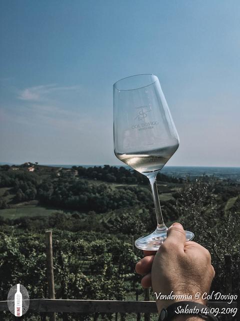 foto Evento Wine Embassy – Vendemmia @ Col Dovigo 14.09.2019 43