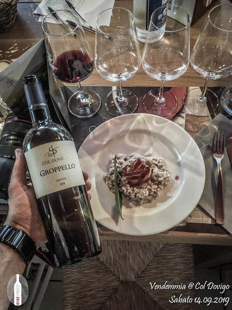 foto Evento Wine Embassy – Vendemmia @ Col Dovigo 14.09.2019 47