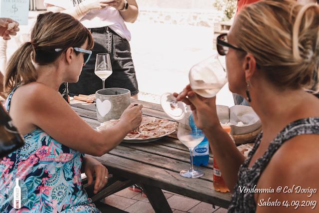 foto Evento Wine Embassy – Vendemmia @ Col Dovigo 14.09.2019 5