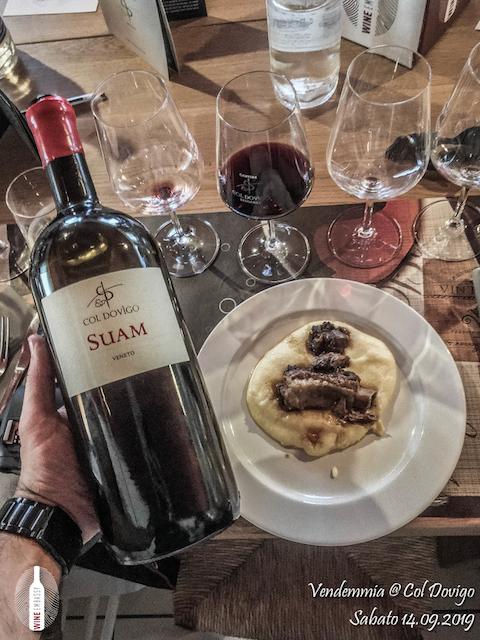 foto Evento Wine Embassy – Vendemmia @ Col Dovigo 14.09.2019 50