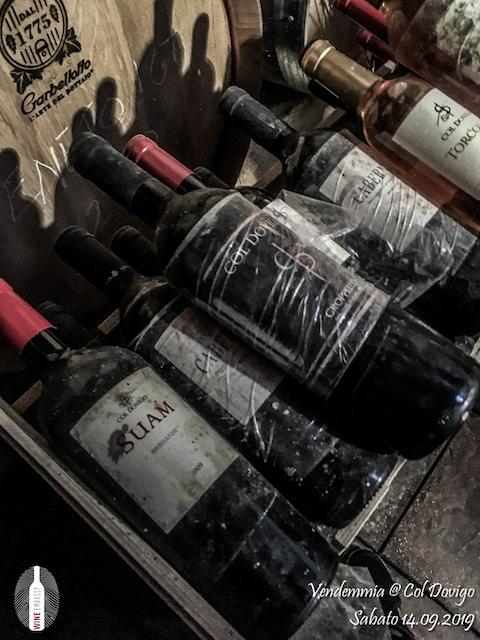 foto Evento Wine Embassy – Vendemmia @ Col Dovigo 14.09.2019 52