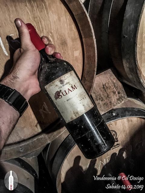 foto Evento Wine Embassy – Vendemmia @ Col Dovigo 14.09.2019 53