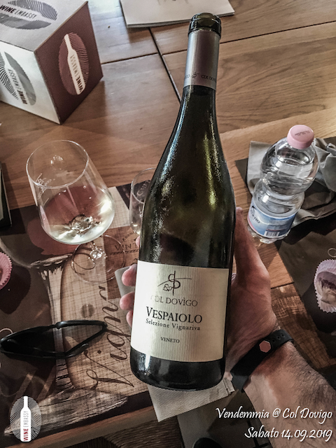foto Evento Wine Embassy – Vendemmia @ Col Dovigo 14.09.2019 55