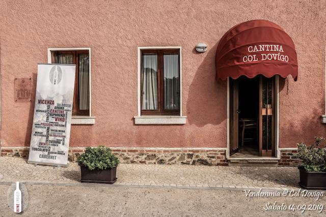 foto Evento Wine Embassy – Vendemmia @ Col Dovigo 14.09.2019 57