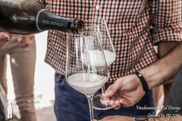 foto Evento Wine Embassy – Vendemmia @ Col Dovigo 14.09.2019 6