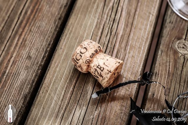 foto Evento Wine Embassy – Vendemmia @ Col Dovigo 14.09.2019 7