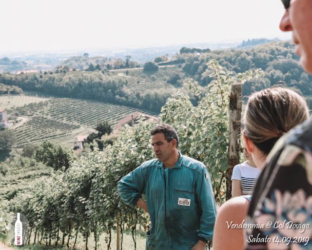 foto Evento Wine Embassy – Vendemmia @ Col Dovigo 14.09.2019 71