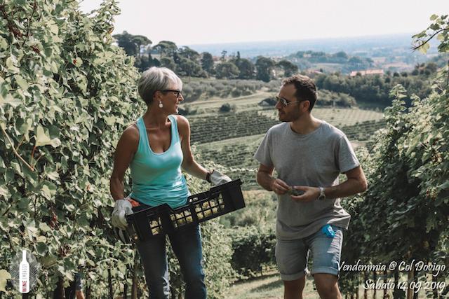 foto Evento Wine Embassy – Vendemmia @ Col Dovigo 14.09.2019 78