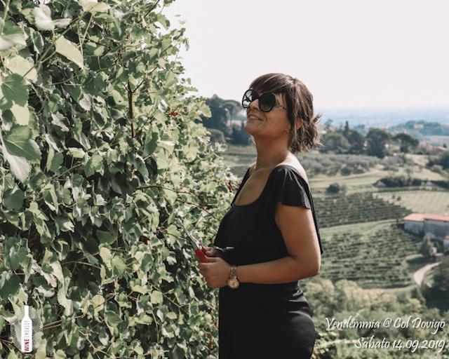 foto Evento Wine Embassy – Vendemmia @ Col Dovigo 14.09.2019 79