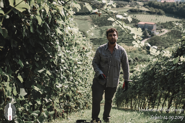 foto Evento Wine Embassy – Vendemmia @ Col Dovigo 14.09.2019 84