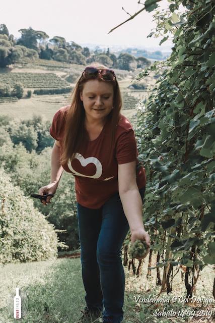 foto Evento Wine Embassy – Vendemmia @ Col Dovigo 14.09.2019 90