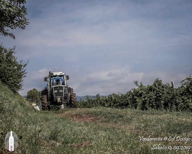 foto Evento Wine Embassy – Vendemmia @ Col Dovigo 14.09.2019 94