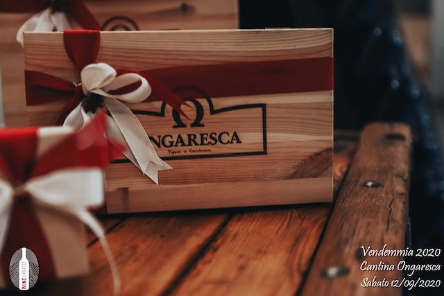 foto Evento Wine Embassy – Vendemmia @ Cantina Ongaresca 12 Settembre 2020 – – 3