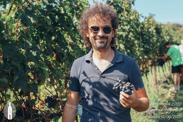 foto Evento Wine Embassy – Vendemmia @ Cantina Ongaresca 12 Settembre 2020 – – 33