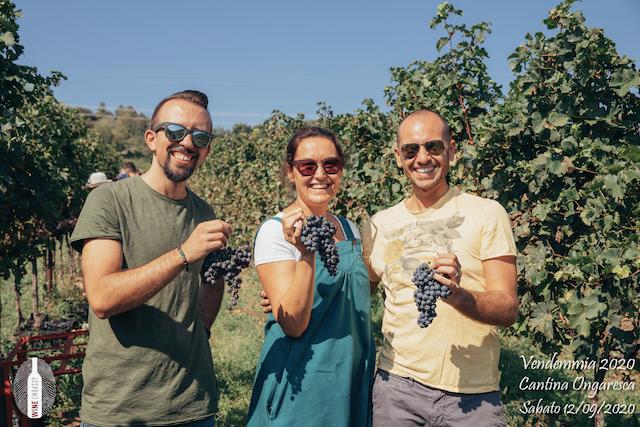 foto Evento Wine Embassy – Vendemmia @ Cantina Ongaresca 12 Settembre 2020 – – 40